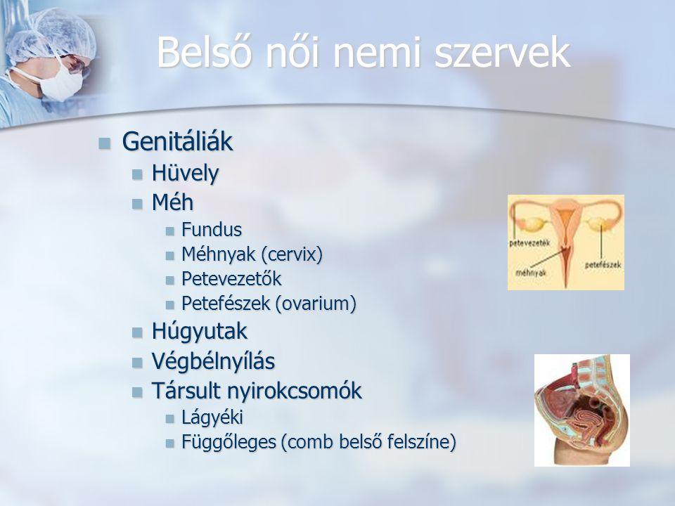Belső női nemi szervek Genitáliák Genitáliák Hüvely Hüvely Méh Méh Fundus Fundus Méhnyak (cervix) Méhnyak (cervix) Petevezetők Petevezetők Petefészek (ovarium) Petefészek (ovarium) Húgyutak Húgyutak Végbélnyílás Végbélnyílás Társult nyirokcsomók Társult nyirokcsomók Lágyéki Lágyéki Függőleges (comb belső felszíne) Függőleges (comb belső felszíne)