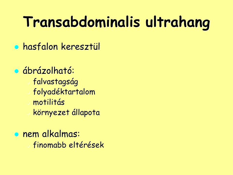 Transabdominalis ultrahang hasfalon keresztül hasfalon keresztül ábrázolható: ábrázolható: falvastagság falvastagság folyadéktartalom folyadéktartalom