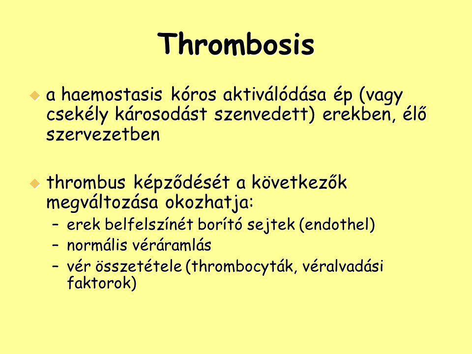Thrombosis  a haemostasis kóros aktiválódása ép (vagy csekély károsodást szenvedett) erekben, élő szervezetben  thrombus képződését a következők meg