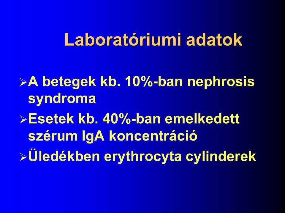 Patológia Diffúz vagy focalis mesangioproliferatív glomerulonephritis Immunhisztológia: mesangialis IgA depositumok