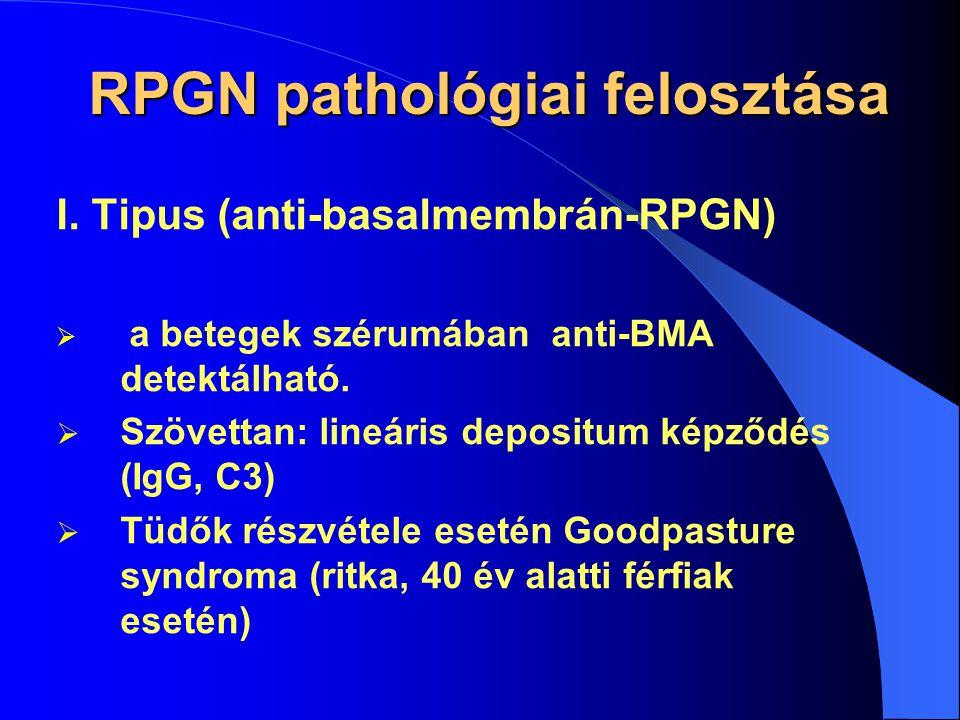 Rapidan Progrediáló GN Etiológia  Szimptomás RPGN: valamilyen vasculitis vesemanifesztációja (pl.