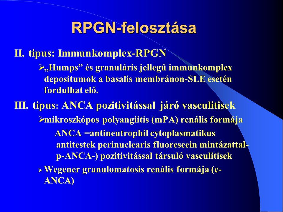 RPGN pathológiai felosztása I.