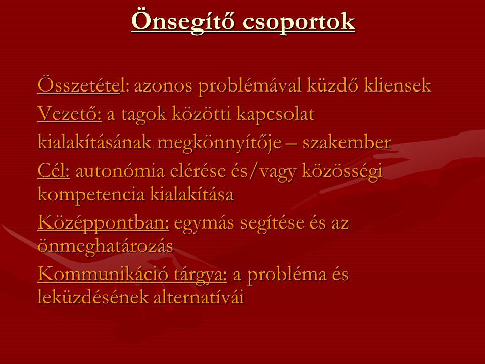 Az önsegítő csoportok típusai /Neményi Mária-Csepeli György 1989.