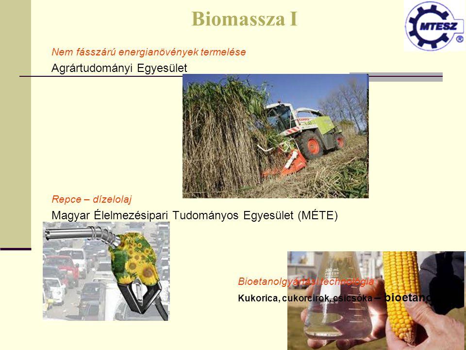 Nem fásszárú energianövények termelése Agrártudományi Egyesület Repce – dízelolaj Magyar Élelmezésipari Tudományos Egyesület (MÉTE) Bioetanolgyártási