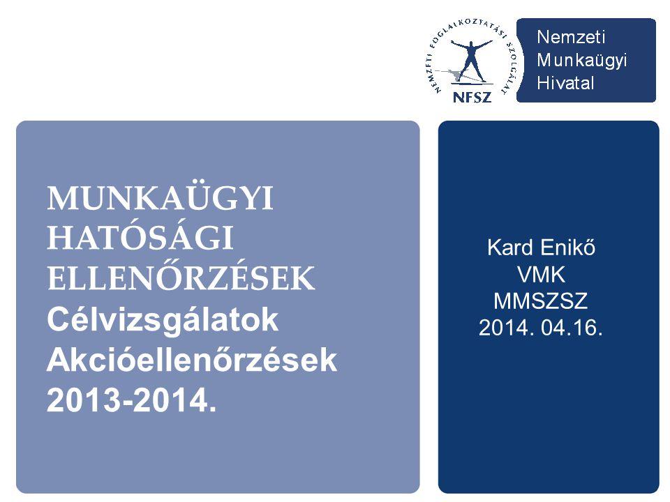 MUNKAÜGYI HATÓSÁGI ELLENŐRZÉSEK Célvizsgálatok Akcióellenőrzések 2013-2014.