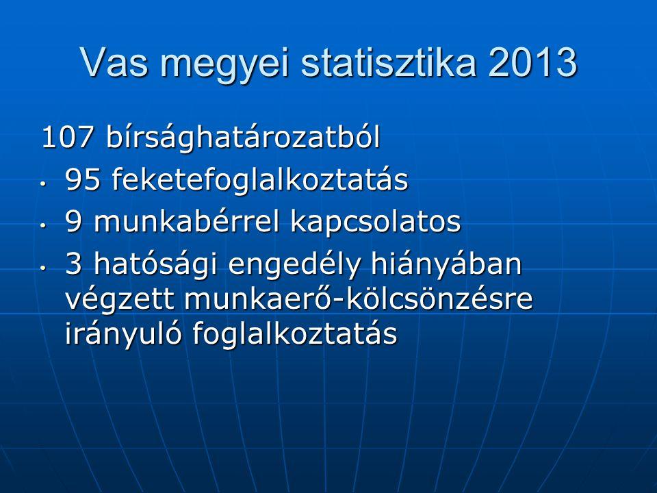 Szolgáltatást támogató tevékenységet ellátó munkáltatókra vonatkozó célellenőrzés [2013.