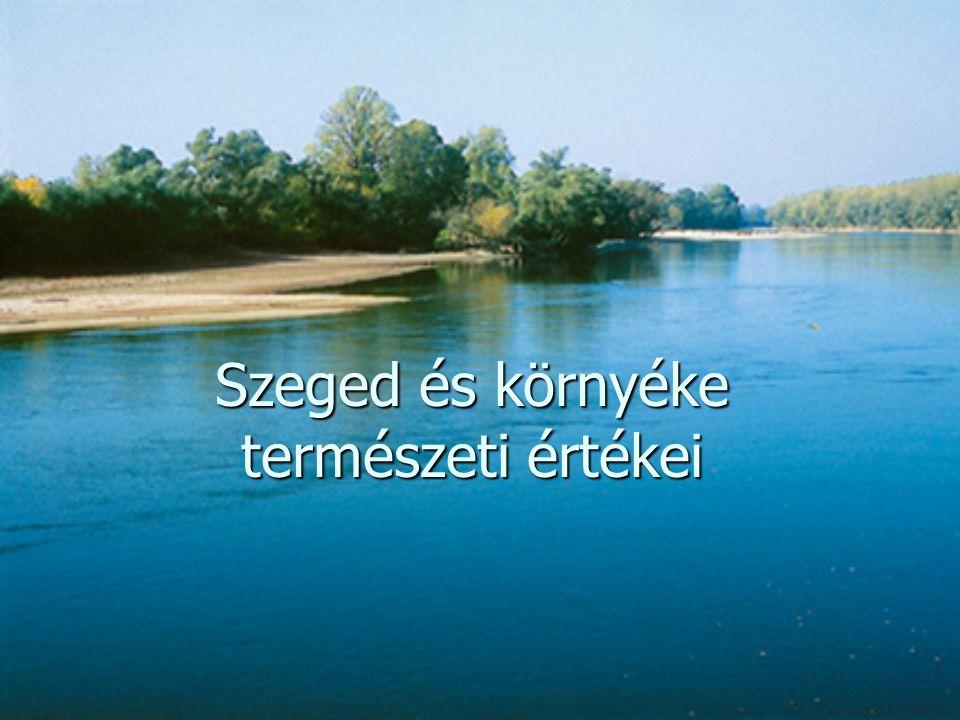 Szeged és környéke természeti értékei