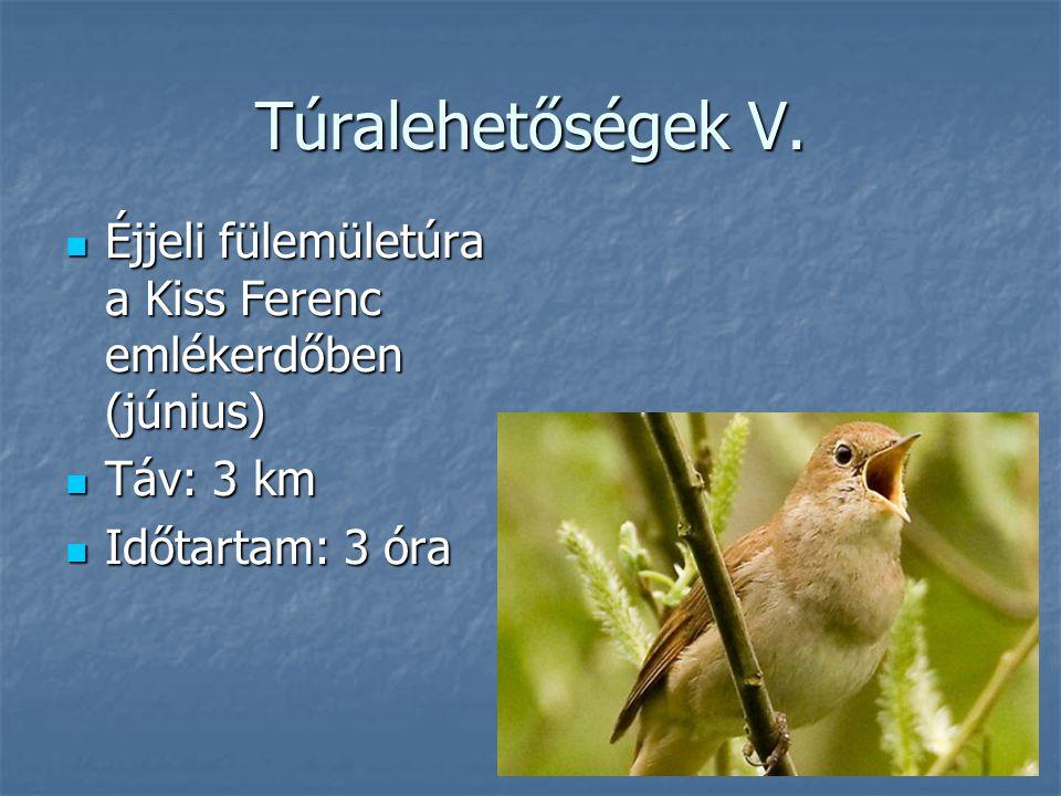 Túralehetőségek V. Éjjeli fülemületúra a Kiss Ferenc emlékerdőben (június) Éjjeli fülemületúra a Kiss Ferenc emlékerdőben (június) Táv: 3 km Táv: 3 km