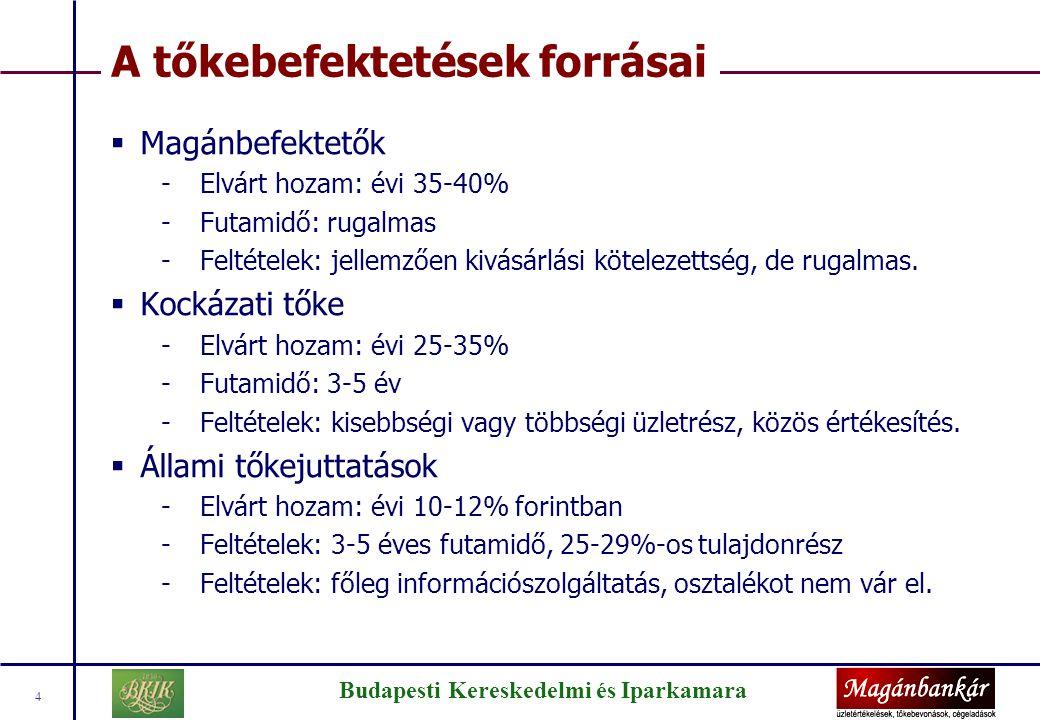 Budapesti Kereskedelmi és Iparkamara 4 A tőkebefektetések forrásai  Magánbefektetők -Elvárt hozam: évi 35-40% -Futamidő: rugalmas -Feltételek: jellem