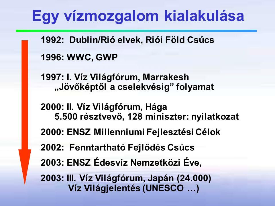 """Egy vízmozgalom kialakulása 1992: Dublin/Rió elvek, Riói Föld Csúcs 1996: WWC, GWP 1997: I. Víz Világfórum, Marrakesh """"Jövőképtől a cselekvésig"""" folya"""