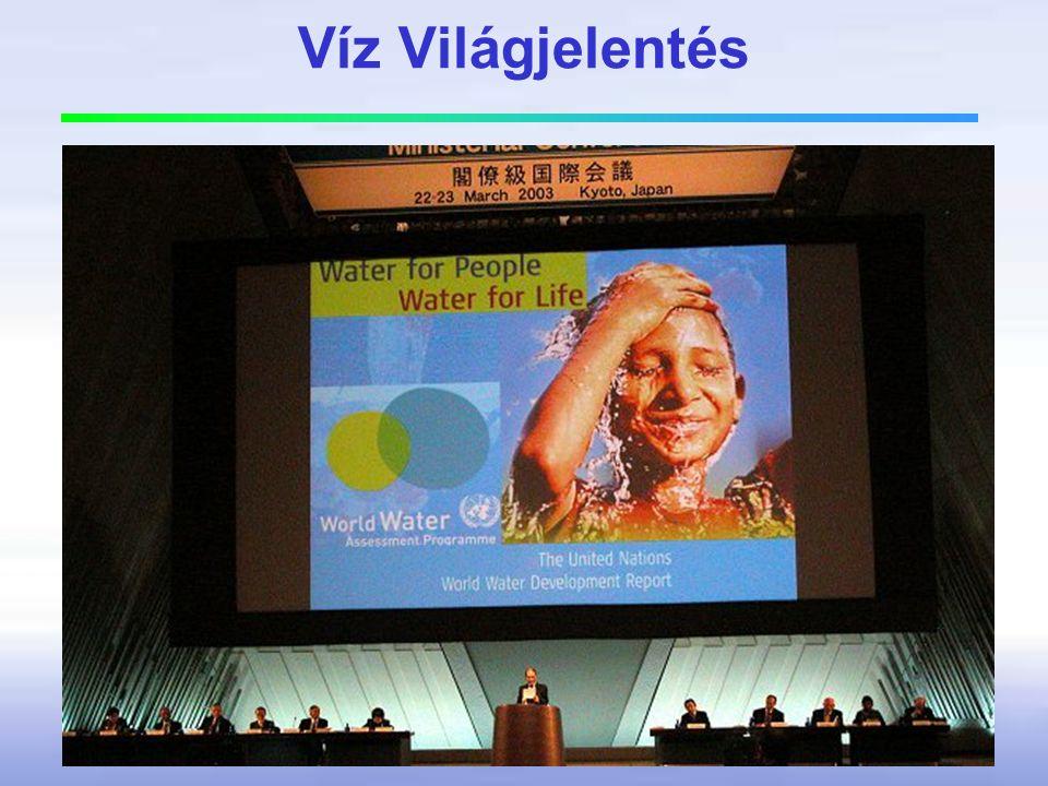 Víz Világjelentés