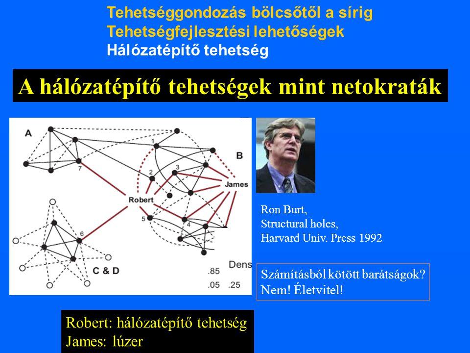 Robert: hálózatépítő tehetség James: lúzer A hálózatépítő tehetségek mint netokraták Ron Burt, Structural holes, Harvard Univ. Press 1992 Számításból