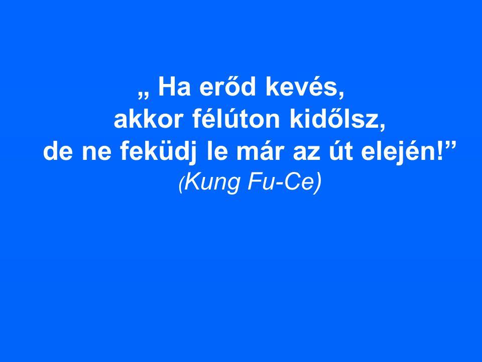 """"""" Ha erőd kevés, akkor félúton kidőlsz, de ne feküdj le már az út elején!"""" ( Kung Fu-Ce)"""
