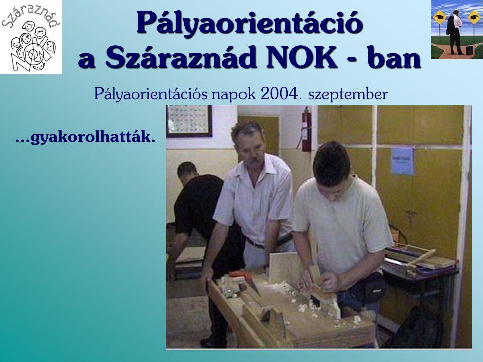 Pályaorientáció a Száraznád NOK - ban Pályaorientációs napok 2004. szeptember …gyakorolhatták.