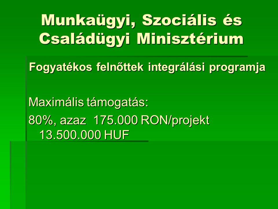 Munkaügyi, Szociális és Családügyi Minisztérium Fogyatékos felnőttek integrálási programja Maximális támogatás: 80%, azaz 175.000 RON/projekt 13.500.000 HUF