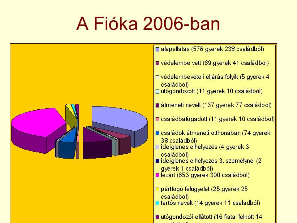 A Fióka 2006-ban