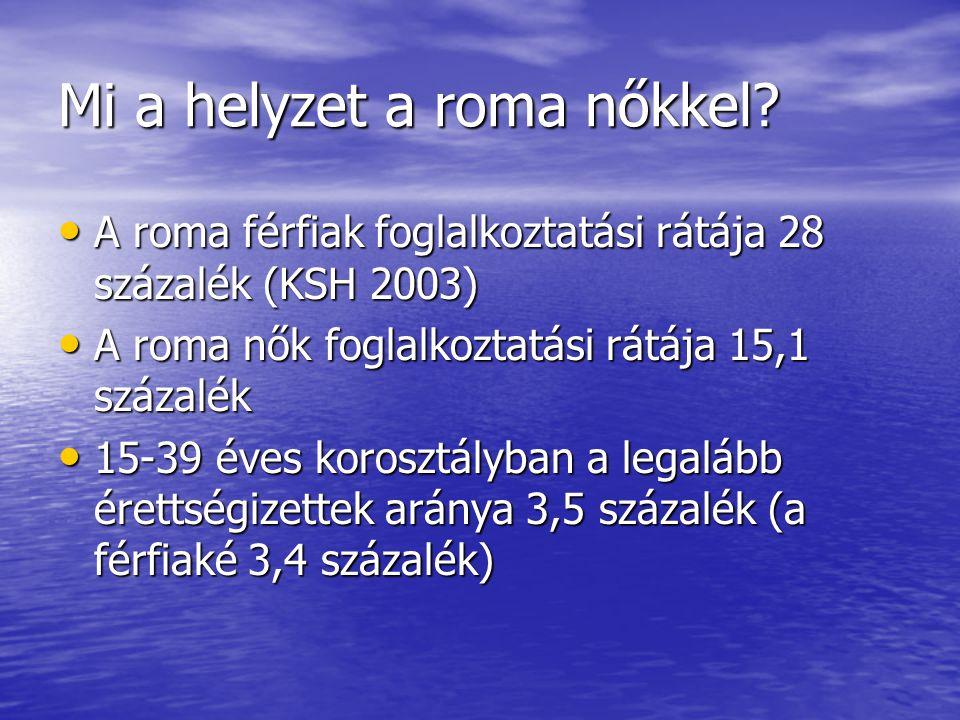 Mi a helyzet a roma nőkkel? A roma férfiak foglalkoztatási rátája 28 százalék (KSH 2003) A roma férfiak foglalkoztatási rátája 28 százalék (KSH 2003)