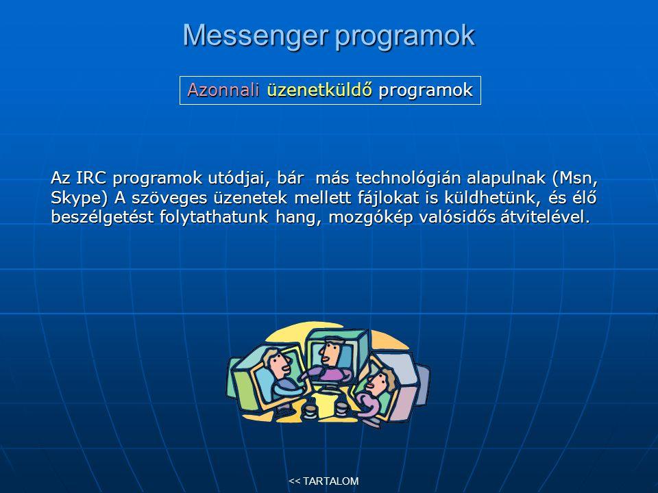 Messenger programok Az IRC programok utódjai, bár más technológián alapulnak (Msn, Skype) A szöveges üzenetek mellett fájlokat is küldhetünk, és élő b