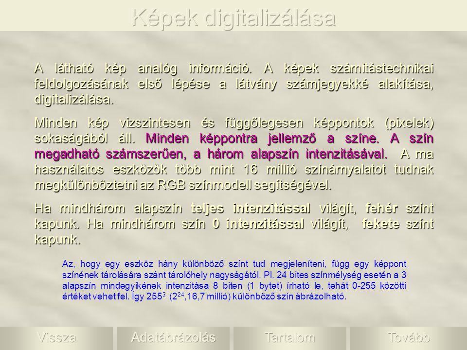 A látható kép analóg információ. A képek számítástechnikai feldolgozásának első lépése a látvány számjegyekké alakítása, digitalizálása. Minden kép vi