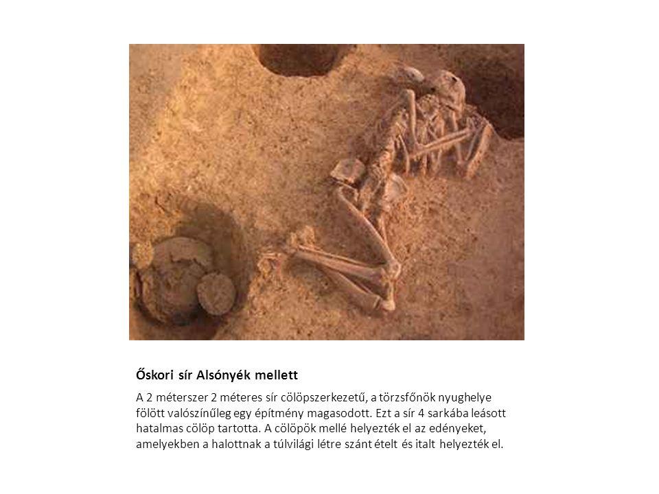 Őskori sír Alsónyék mellett A 2 méterszer 2 méteres sír cölöpszerkezetű, a törzsfőnök nyughelye fölött valószínűleg egy építmény magasodott. Ezt a sír