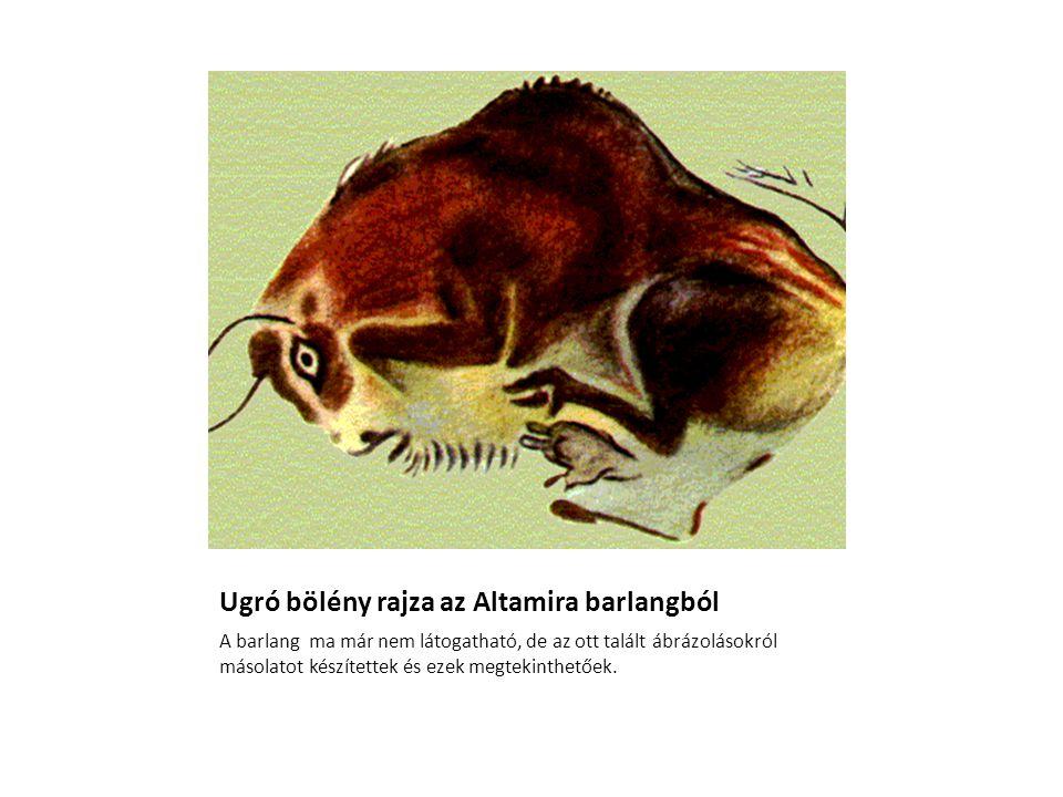 Ugró bölény rajza az Altamira barlangból A barlang ma már nem látogatható, de az ott talált ábrázolásokról másolatot készítettek és ezek megtekinthető