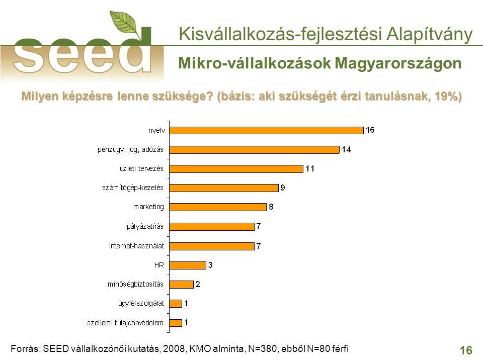 16 Mikro-vállalkozások Magyarországon Milyen képzésre lenne szüksége? (bázis: aki szükségét érzi tanulásnak, 19%) Forrás: SEED vállalkozónői kutatás,