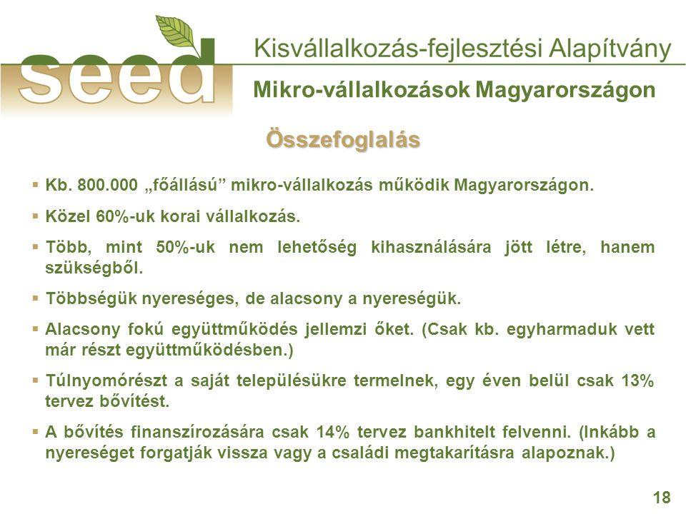 """18 Mikro-vállalkozások Magyarországon  Kb. 800.000 """"főállású"""" mikro-vállalkozás működik Magyarországon.  Közel 60%-uk korai vállalkozás.  Több, min"""