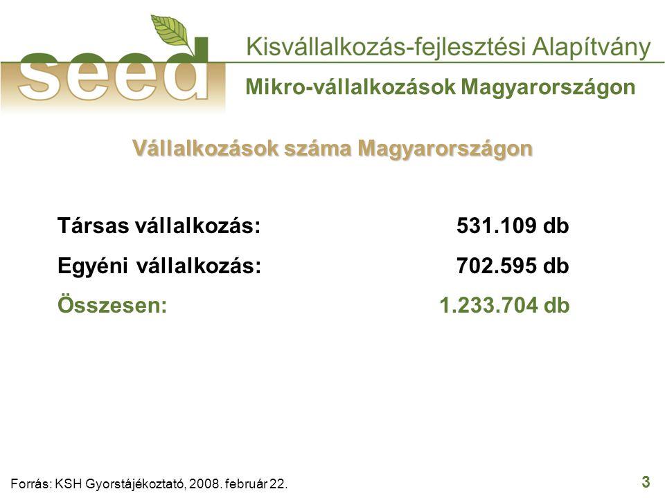 3 Mikro-vállalkozások Magyarországon Társas vállalkozás: 531.109 db Egyéni vállalkozás: 702.595 db Összesen: 1.233.704 db Forrás: KSH Gyorstájékoztató, 2008.