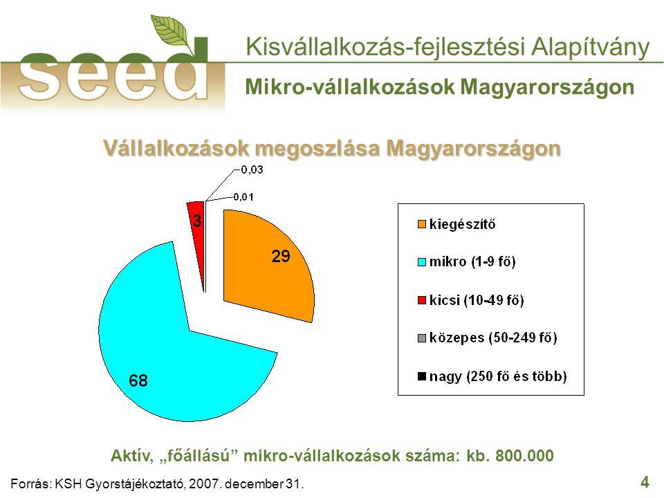 """4 Mikro-vállalkozások Magyarországon Forrás: KSH Gyorstájékoztató, 2007. december 31. Vállalkozások megoszlása Magyarországon Aktív, """"főállású"""" mikro-"""