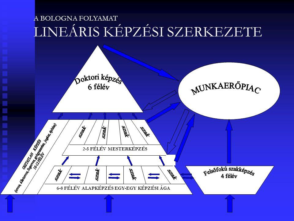 A BOLOGNA FOLYAMAT LINEÁRIS KÉPZÉSI SZERKEZETE 6-8 FÉLÉV ALAPKÉPZÉS EGY-EGY KÉPZÉSI ÁGA 2-5 FÉLÉV MESTERKÉPZÉS