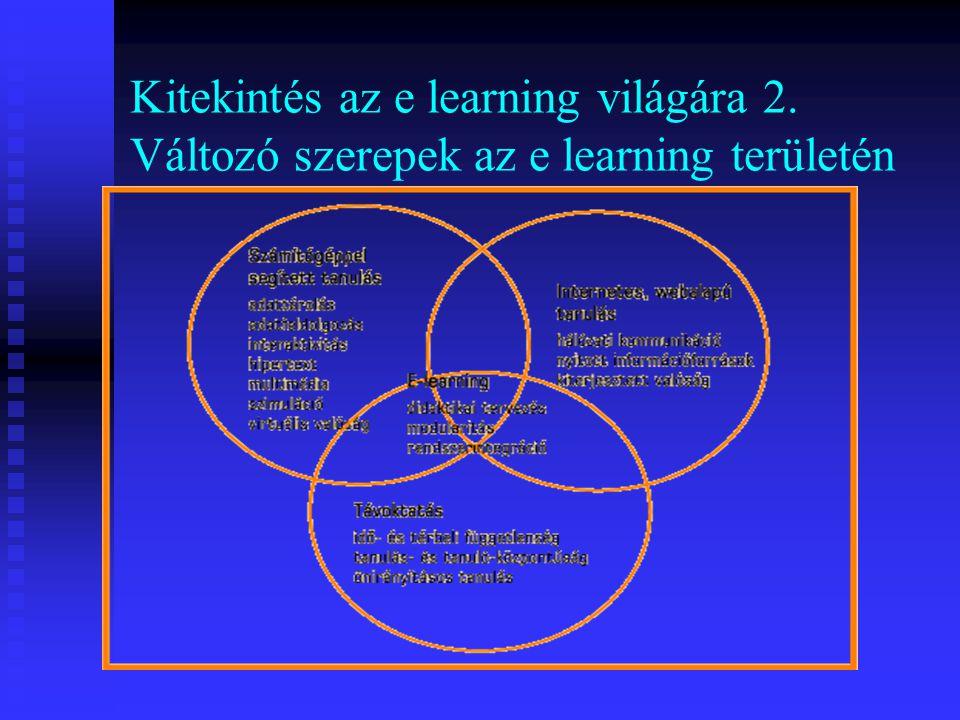 Kitekintés az e learning világára 2. Változó szerepek az e learning területén