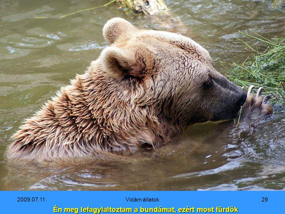 2009.07.11.Vidám állatok28 Na én megyek fagylaltért!