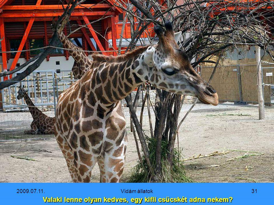 2009.07.11.Vidám állatok30 Na, hány fejem van?
