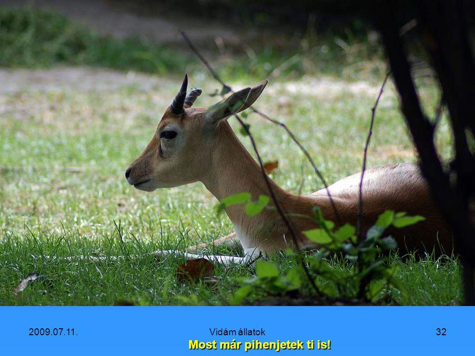 2009.07.11.Vidám állatok31 Valaki lenne olyan kedves, egy kifli csücskét adna nekem?