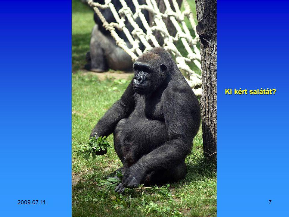 2009.07.11.Vidám állatok6 Figyeljetek, Ivánka viccet mesél!
