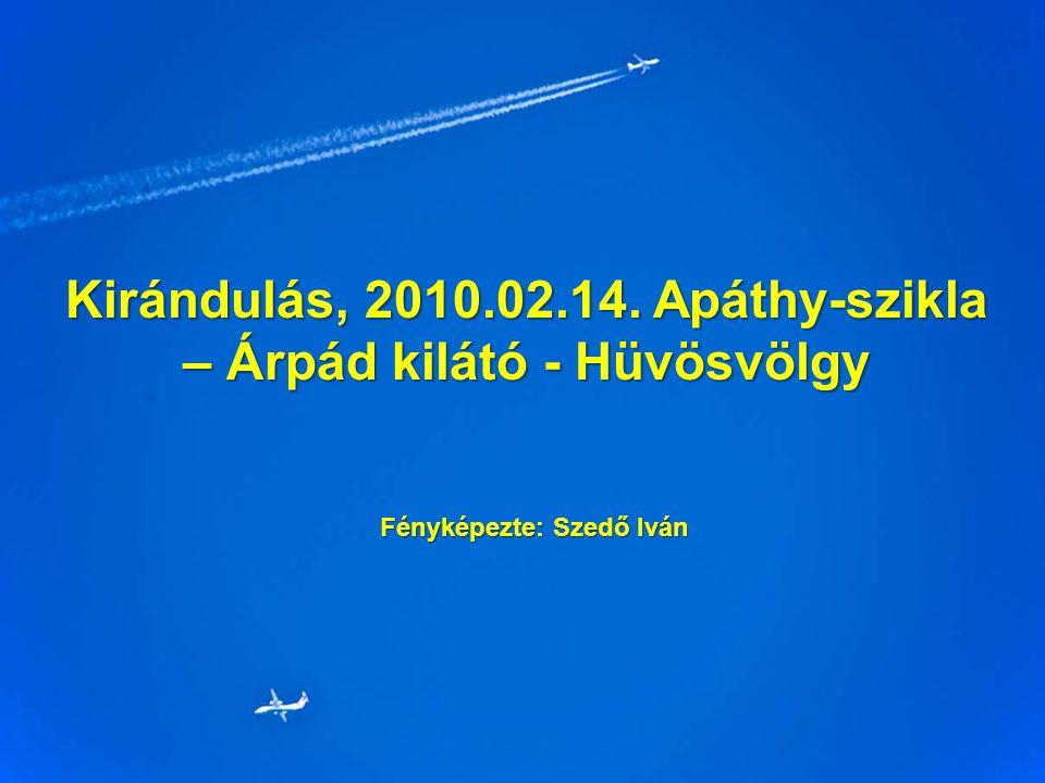 Kirándulás, 2010.02.14. Apáthy-szikla – Árpád kilátó - Hüvösvölgy Fényképezte: Szedő Iván