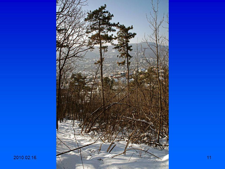2010.02.16.Egyesületi kirándulás, Apáthy szikla- Árpád kilátó-Hüvösvölgy 10
