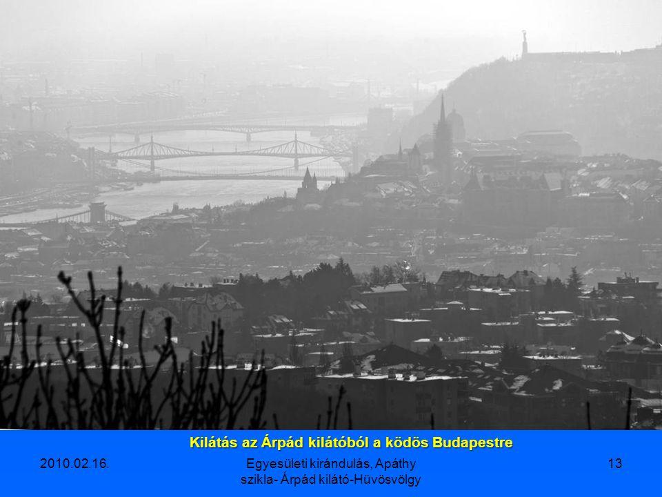 2010.02.16.Egyesületi kirándulás, Apáthy szikla- Árpád kilátó-Hüvösvölgy 12 Árpád-kilátó