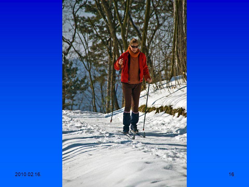 2010.02.16.Egyesületi kirándulás, Apáthy szikla- Árpád kilátó-Hüvösvölgy 15