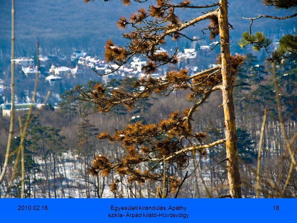2010.02.16.Egyesületi kirándulás, Apáthy szikla- Árpád kilátó-Hüvösvölgy 17