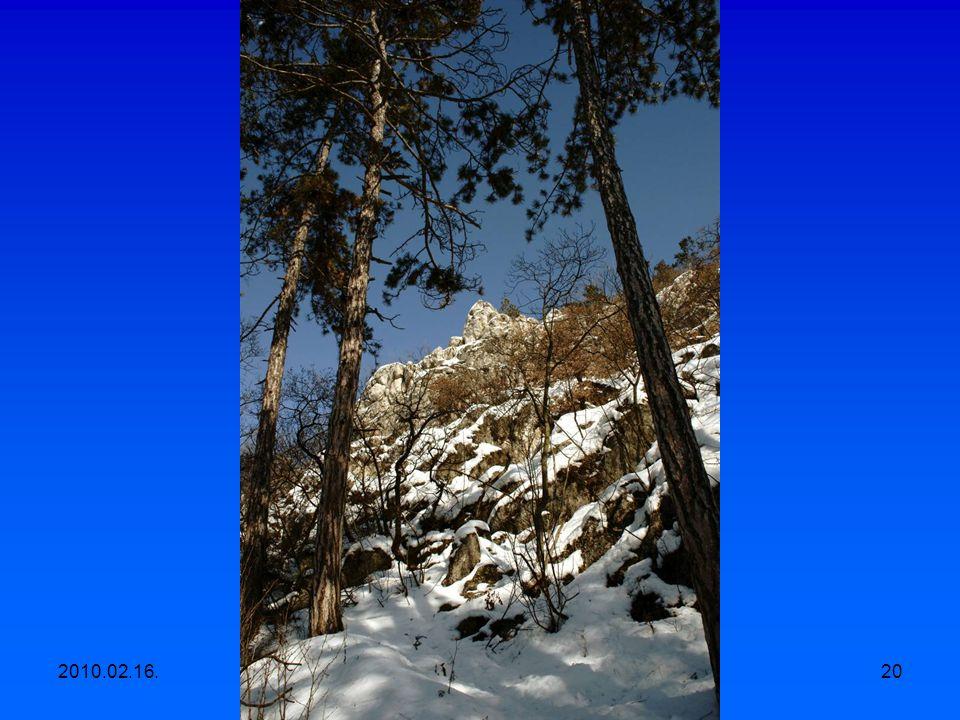 2010.02.16.Egyesületi kirándulás, Apáthy szikla- Árpád kilátó-Hüvösvölgy 19