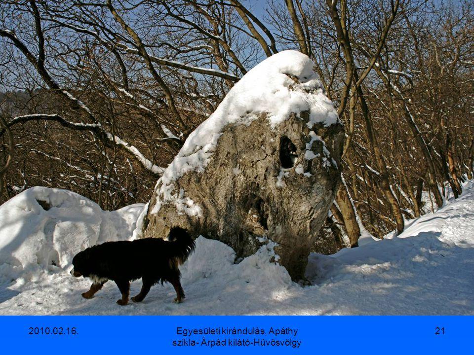2010.02.16.Egyesületi kirándulás, Apáthy szikla- Árpád kilátó-Hüvösvölgy 20
