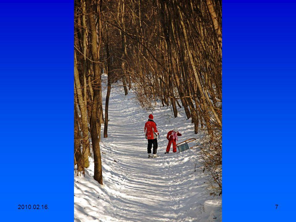 2010.02.16.Egyesületi kirándulás, Apáthy szikla- Árpád kilátó-Hüvösvölgy 6