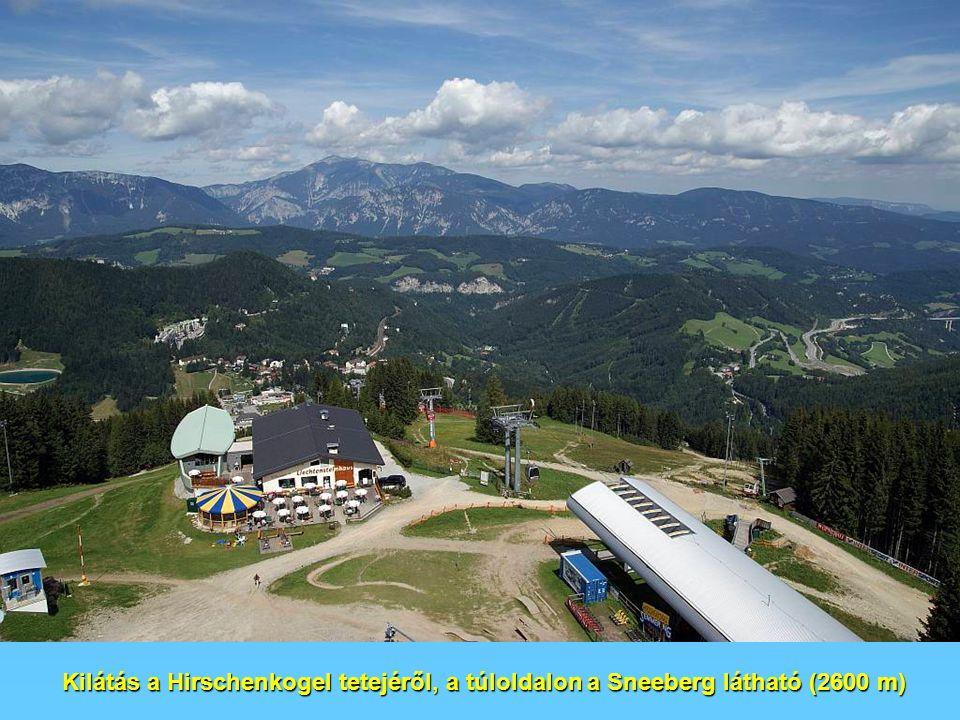 Kilátás a Hirschenkogel tetejéről, a túloldalon a Sneeberg látható (2600 m)