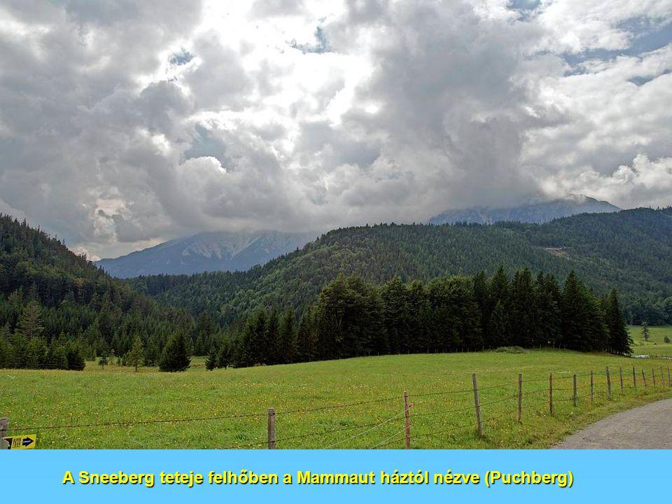 A Sneeberg teteje felhőben a Mammaut háztól nézve (Puchberg)