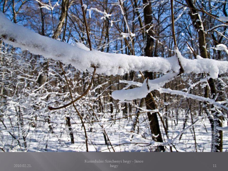 2010.02.21. Kirándulás: Széchenyi hegy - János hegy10