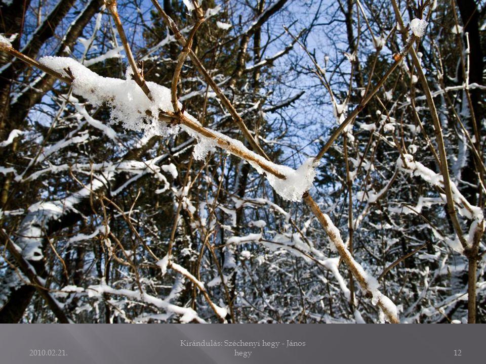 2010.02.21. Kirándulás: Széchenyi hegy - János hegy11