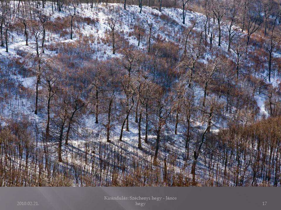 2010.02.21. Kirándulás: Széchenyi hegy - János hegy16