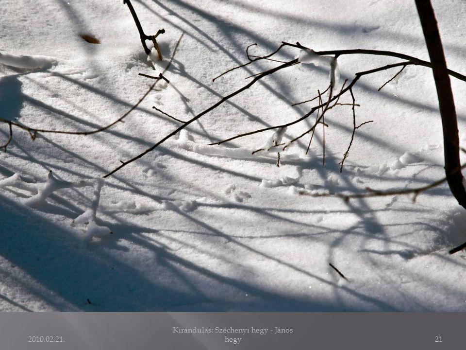2010.02.21. Kirándulás: Széchenyi hegy - János hegy20