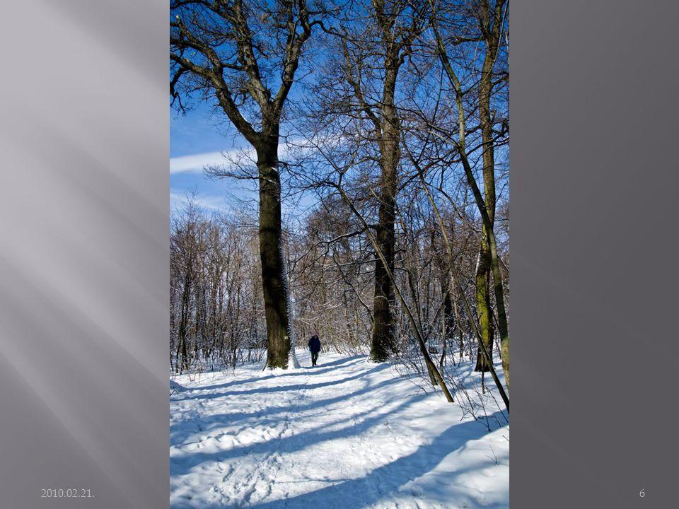 2010.02.21. Kirándulás: Széchenyi hegy - János hegy6